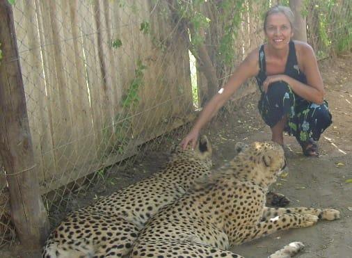 cheetah sanctuarie